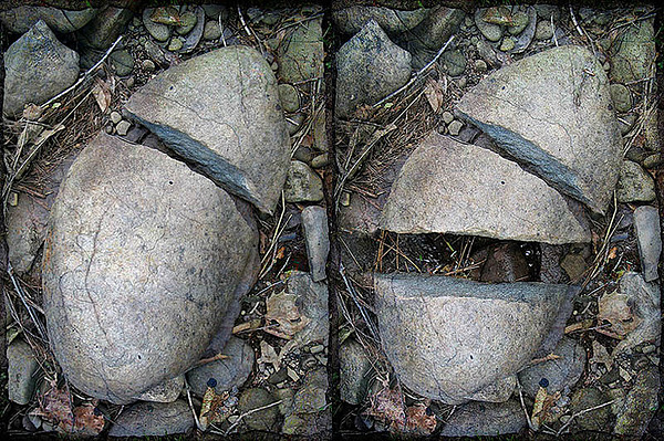 Environmental Photograph - Before     After by Paul Bracey