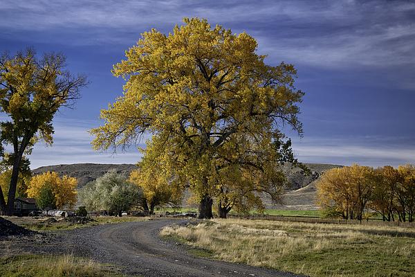 Color Prints Photograph - Belfry Fall Landscape 5 by Roger Snyder