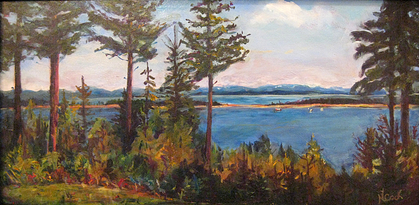 Painting Painting - Bellhaven View by Nanci Cook