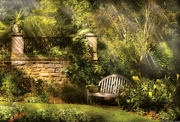 Savad Photograph - Bench - Edens Edge  by Mike Savad