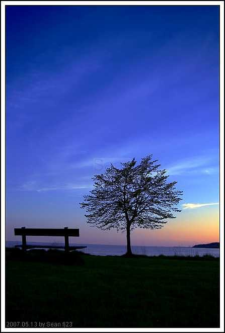Bench Photograph - Bench And Tree In The Sunset by Sean Xiao