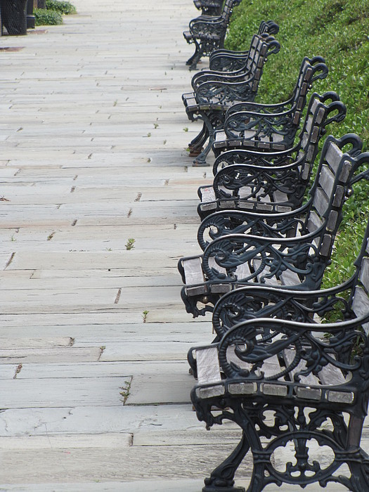 Benches Photograph - Benches In Charleston Sc by Jason Moore