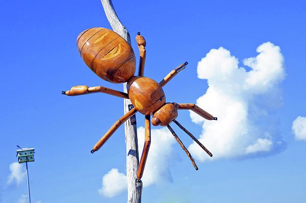 Big Bug Photograph - Big Bug Sculpture 1 by Andee Design