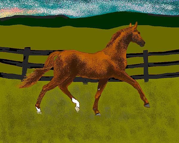 Horse Digital Art - Big Duke by Carole Boyd