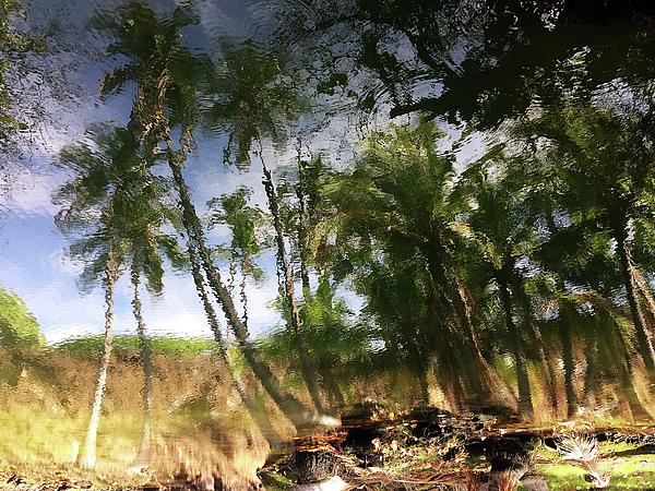 Hawaii Photograph - Big Island Reflections by Art Shimamura
