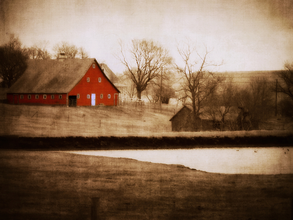 Barn Photograph - Big Red by Julie Hamilton