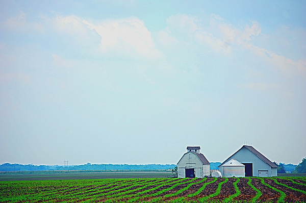 Iowa Photograph - Big Sky In Spring by Jame Hayes