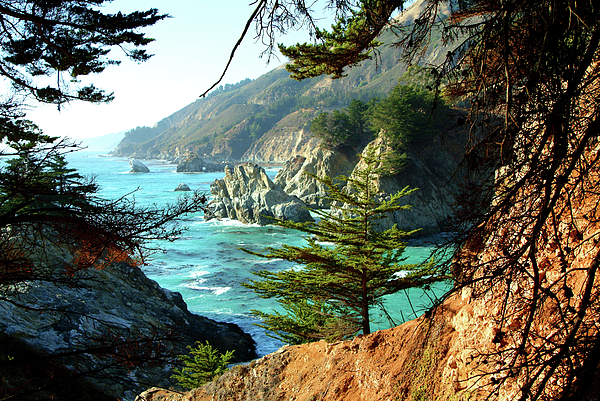 Nature Photograph - Big Sur Vista by Charlene Mitchell