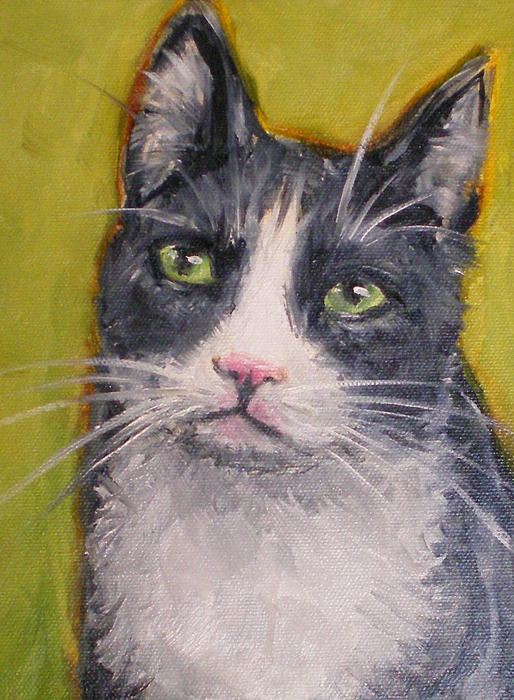 Cat Painting - Bingo by Sheila Tajima