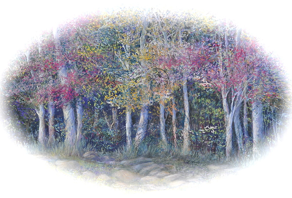 Trees Painting - Birch Tree Gathering by Penny Neimiller