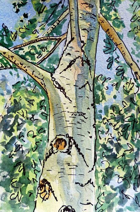 Birch Painting - Birch Tree Sketchbook Project Down My Street by Irina Sztukowski