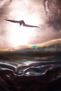 Bird Sculpture - Bird In Flight by Jeff  Williams