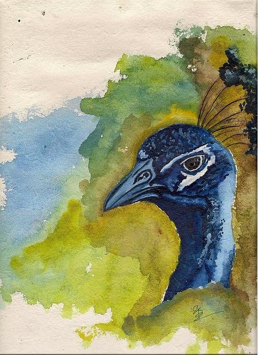 Bird Painting by Suman Ghosh