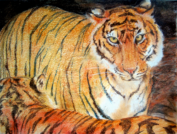 Tiger Pastel - Bitchy Female Seeks Experienced Mate by Penfield Hondros