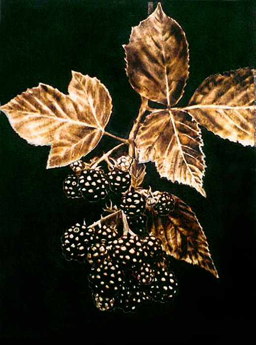 Realistic Pyrography - Black And Sweet by Dino Muradian
