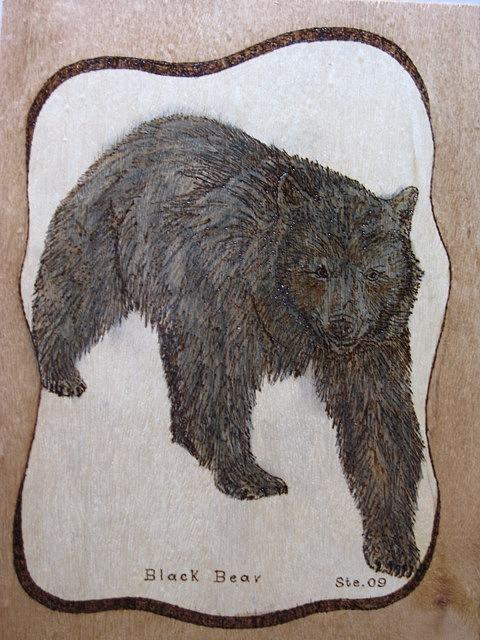 Landscape Pyrography - Black Bear by Steven Steven