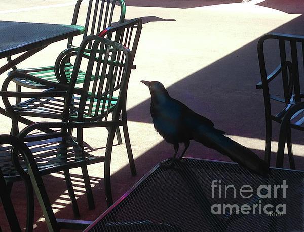 Black Bird Photograph - Black Bird At Central Market by Felipe Adan Lerma