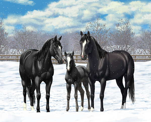 Horses Painting - Black Horses In Winter Pasture by Crista Forest