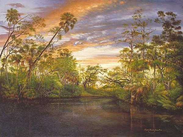 Florida Print - Black Water Run by Keith Martin Johns
