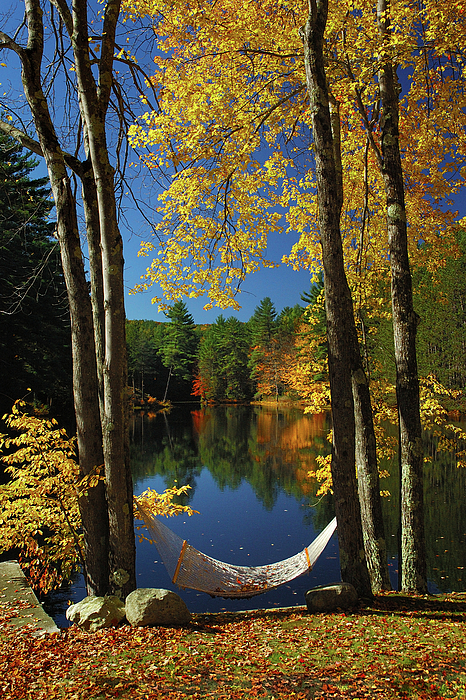 New England Fall Photograph - Bliss - New England Fall Landscape Hammock by Jon Holiday