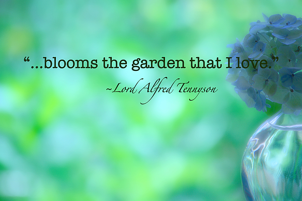Inspirational Art Photograph - Blooms The Garden by Bonnie Bruno