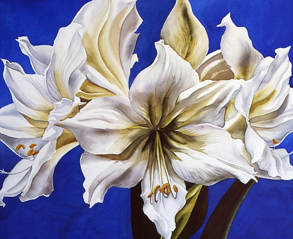 Flower Painting - Blue And White by Alfred Ng