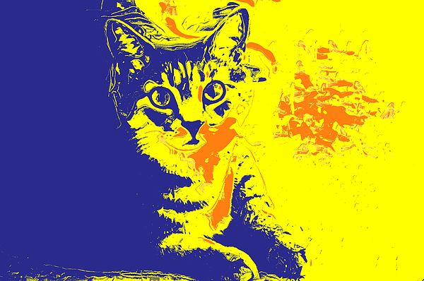 Cat Photograph - Blue Bink by Donna Bentley