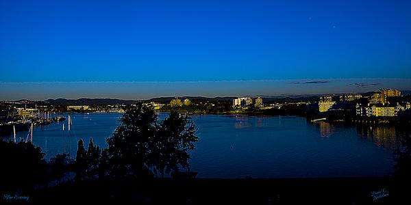 Nature Photograph - Blue Evening by Diane C Nicholson