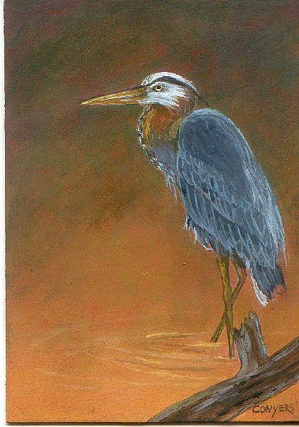 Blue Heron Painting by Peggy Conyers
