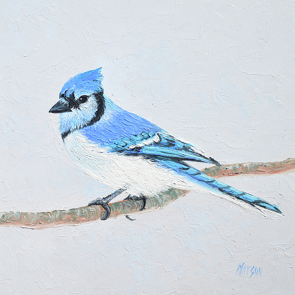Blue Jay Painting - Blue Jay by Jan Matson