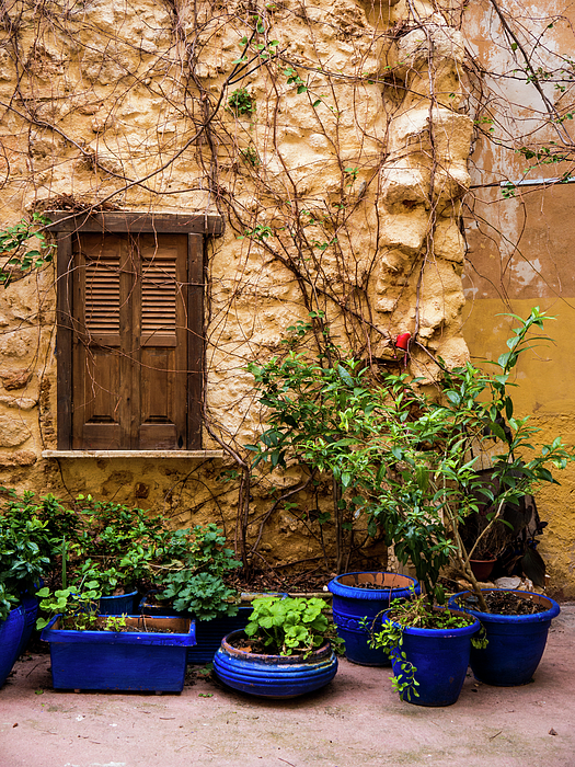 Chania Photograph - Blue-painted Plant Pots by Rae Tucker