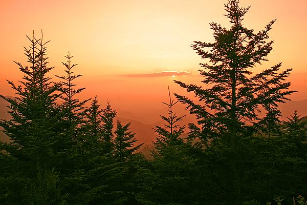 Landscape Photograph - Blue Ridge Parkway 1 by Itai Minovitz