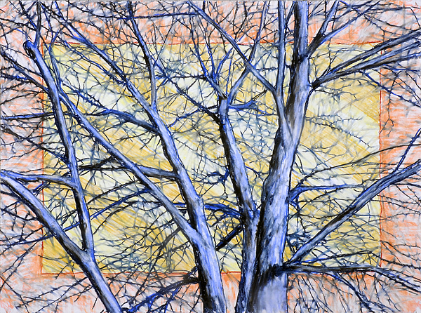 Tree Drawing - Blue Tree Striped Sky by John Terwilliger