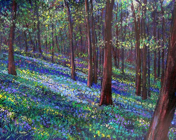 Li Newton - Bluebell Woods