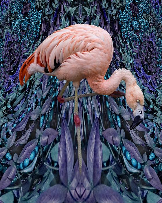 Bird Digital Art - Blueberry Bird by Chuck Brittenham