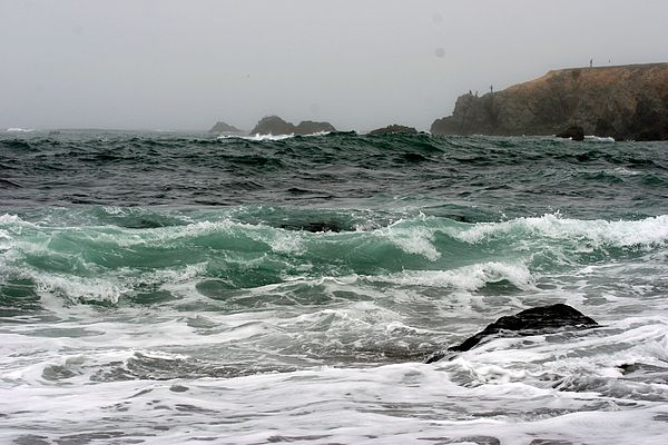 Ocean Beach Photograph - Bodega  Bay by Ofelia  Arreola