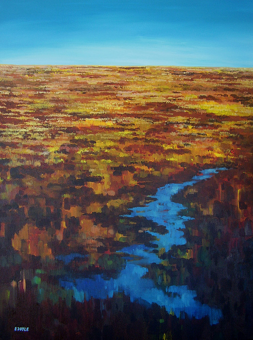 Bog Painting - Bog Pool by Eamon Doyle