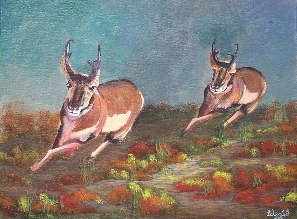 Antelope Painting - Boys.... by Bill Werle