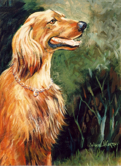 Dog Painting - Brandy   Irish Setter by JoAnne Corpany