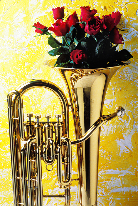 Tuba Photograph - Brass Tuba With Red Roses by Garry Gay