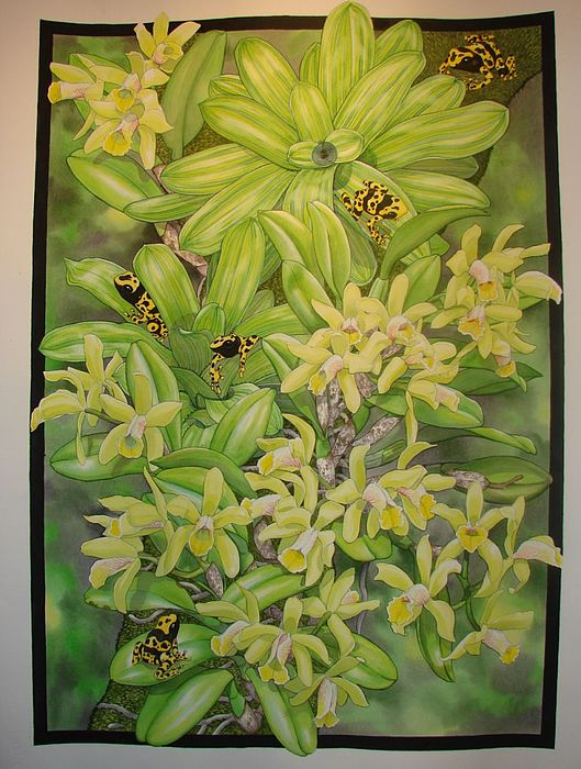 Orchids Painting - Brazilian Gold by Darren James Sturrock