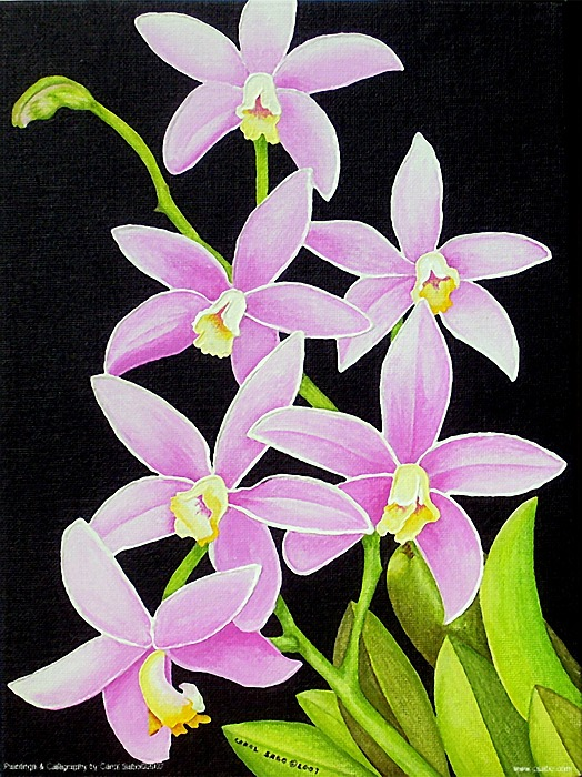 Flowers Painting - Brazilian Orchids by Carol Sabo