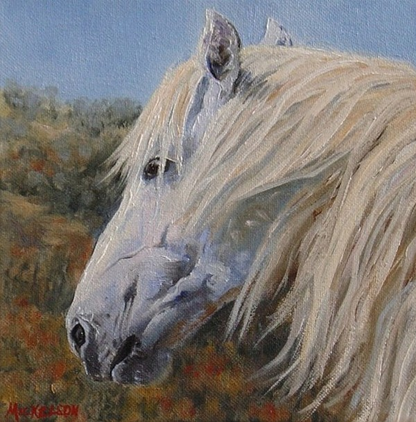 Horse Art Painting - Breezy by Debra Mickelson