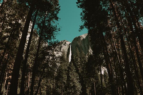 America Photograph - Bridalveil Falls by Marji Lang