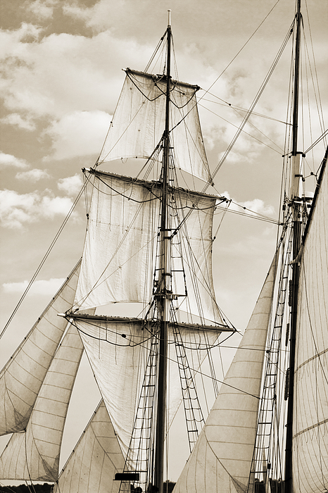 Brigantine Photograph - Brigantine Tallship Fritha Sails And Rigging by Dustin K Ryan