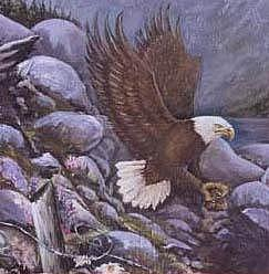 Eagle Painting - broken Fences by Sherry Leigh Williams