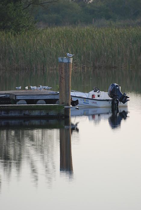 Water Photograph - Broward Boat by Rob Hans