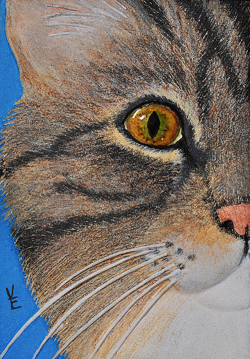 Cat's Eye Relief - Brown Tabby Cat Sculpture by Valerie  Evanson