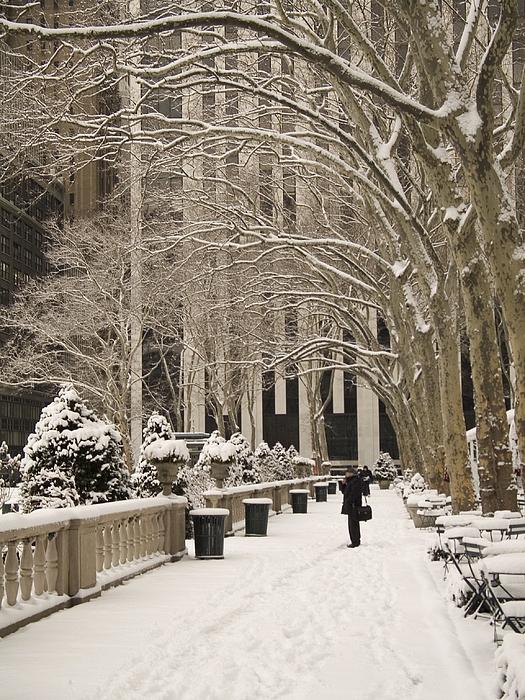 Snow Photograph - Bryant Park Snow by Andrew Kazmierski