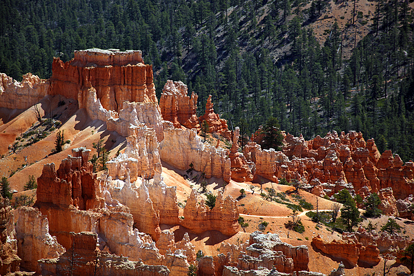 America Photograph - Bryce Canyon  by Jane Rix